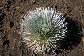 Crater2